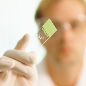 Researcher holding up specimen slide, (focus on slide)